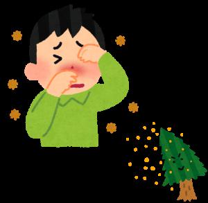 花粉を飛ばす杉と花粉症で苦しむ男性の画像です。辛そうです。